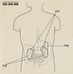 jintai1
