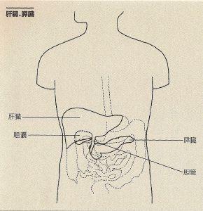 jintai3