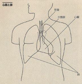 jintai4
